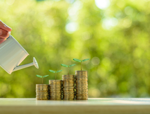 Healthy cash flow – the most important element for sustained growth